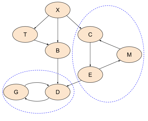 Directed Graph with cycles and SCCs