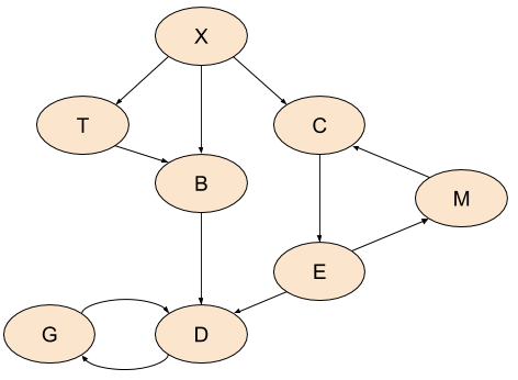 Directed Graph with cycles
